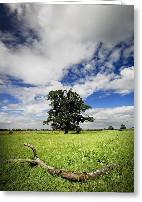 Greeting Card featuring the photograph Deep Blue Wonder by John Chivers