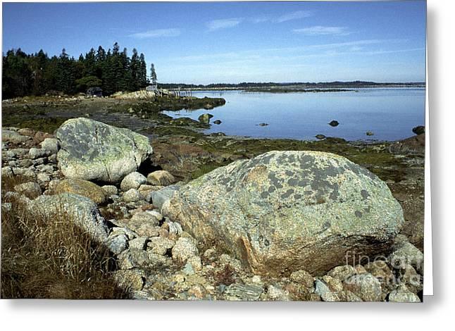 Deer Isle Granite Shoreline Greeting Card by Thomas R Fletcher