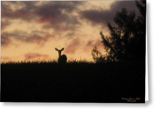 Deer On Hill Greeting Card by Darlene Bell