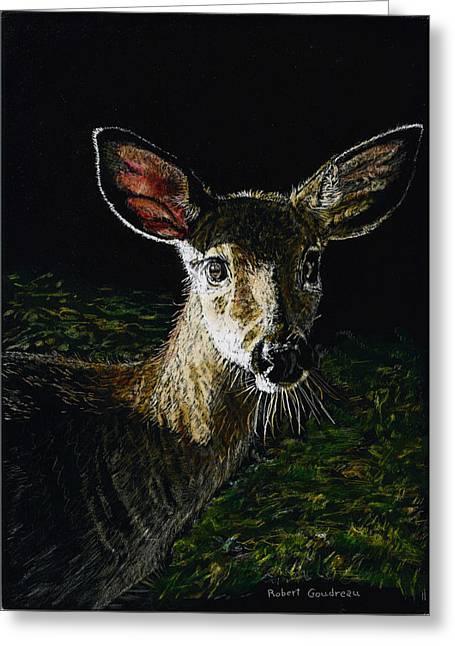 Deer Portrait Greeting Card by Robert Goudreau