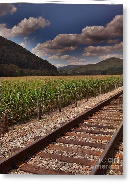 Greeting Card featuring the photograph Del Rio Tennessee by Janice Spivey