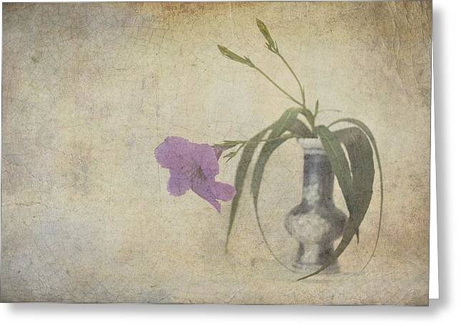 Delicate Touch Of Purple Greeting Card by Jan Amiss Photography