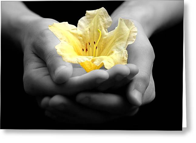 Delicate Yellow Flower In Hands Greeting Card