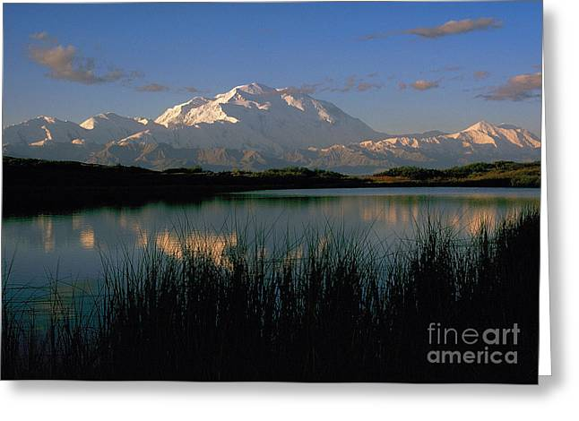 Greeting Card featuring the photograph Denali by Doug Herr