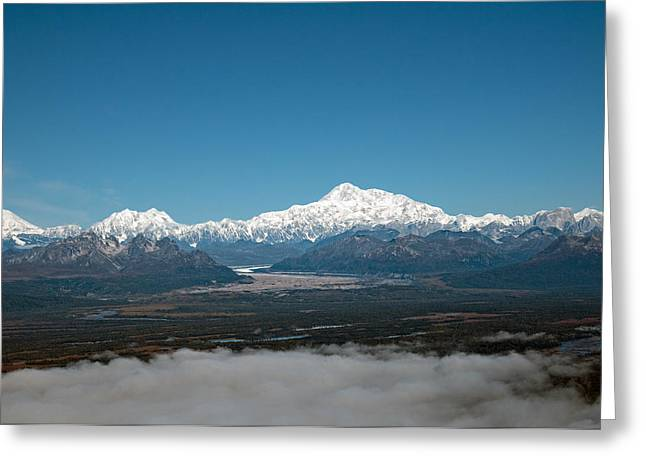 Greeting Card featuring the photograph Denali Park by Gary Rose