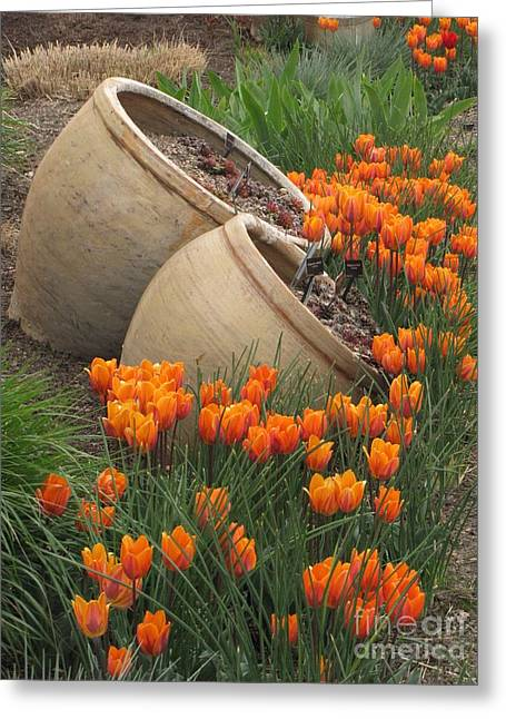 Denver Botanic Planters Greeting Card