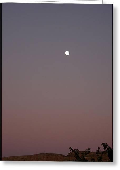 Desert Moon Greeting Card by Marta Alfred