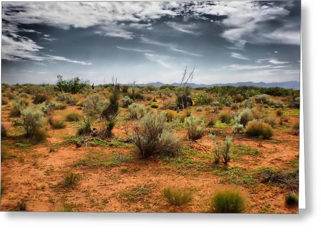 Desert Of New Mexico Greeting Card by Thomas  MacPherson Jr