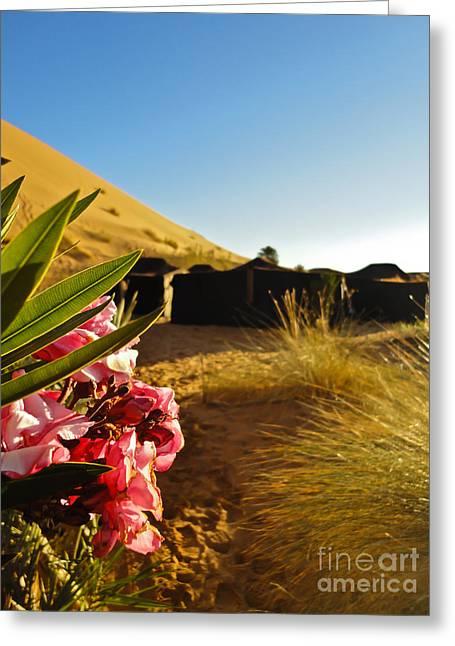 Desert Rose Greeting Card by Nabucodonosor Perez