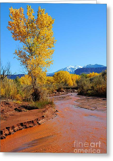Desert Stream In Fall With Snowy Mountains  Greeting Card