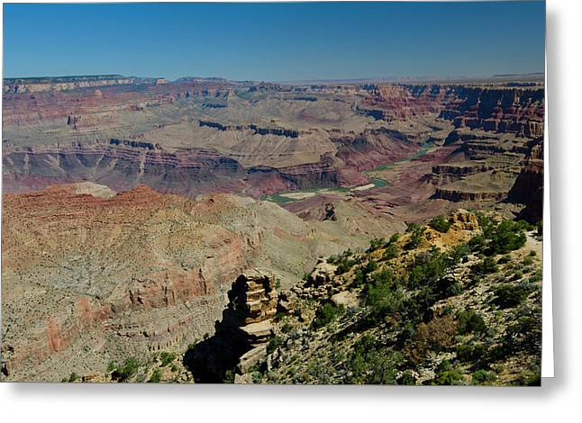 Desert View Greeting Card by Loree Johnson