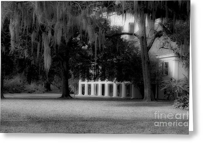 Destrehan Plantation In Black And White Greeting Card by Kathleen K Parker