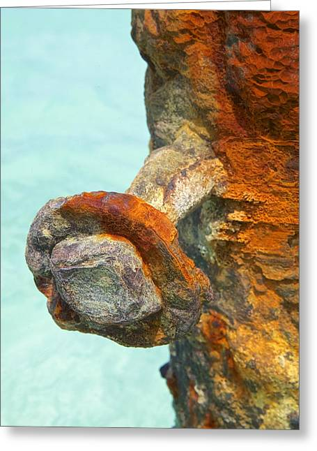 Detail Of A Rusted Dock Pier IIi Greeting Card by David Letts