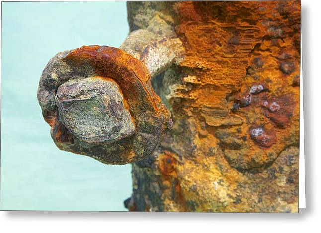 Detail Of A Rusted Dock Pier Iv Greeting Card by David Letts