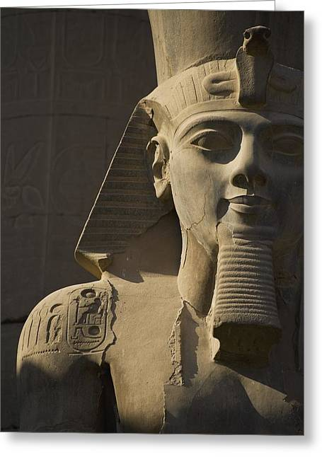 Detail Of Head Of Pharaoh Statue Greeting Card by Axiom Photographic