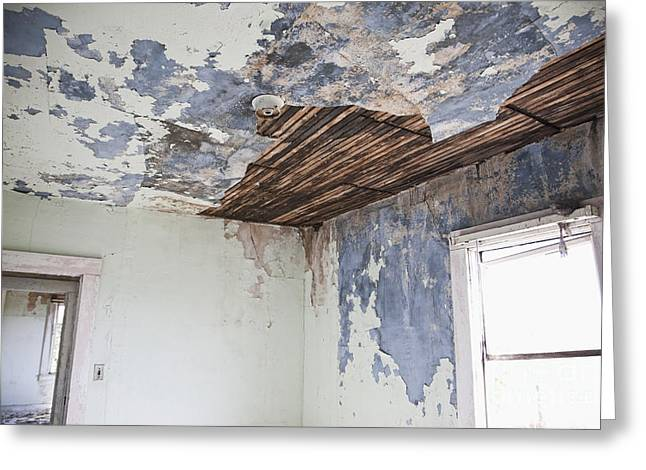 Deteriorating Ceiling In An Abandoned House Greeting Card by Jetta Productions, Inc