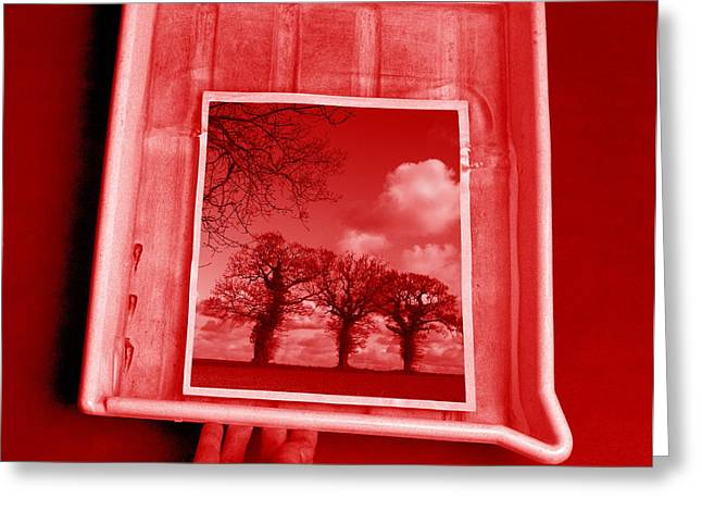 Developing Photograph Greeting Card by Victor De Schwanberg