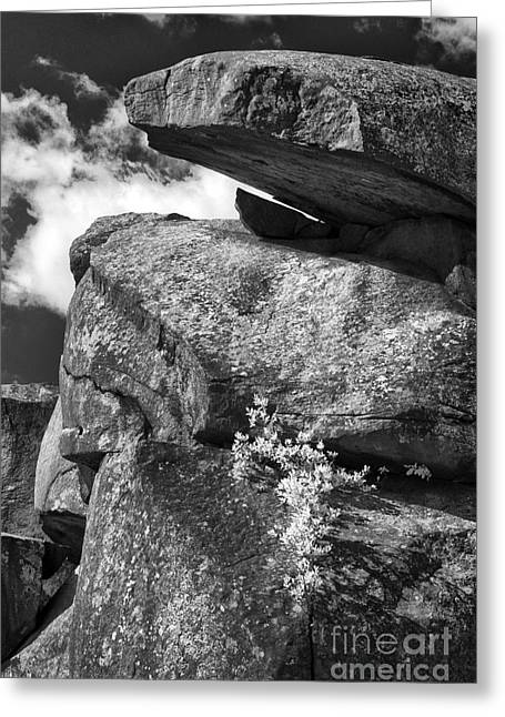 Devil's Den - 34 Greeting Card by Paul W Faust -  Impressions of Light
