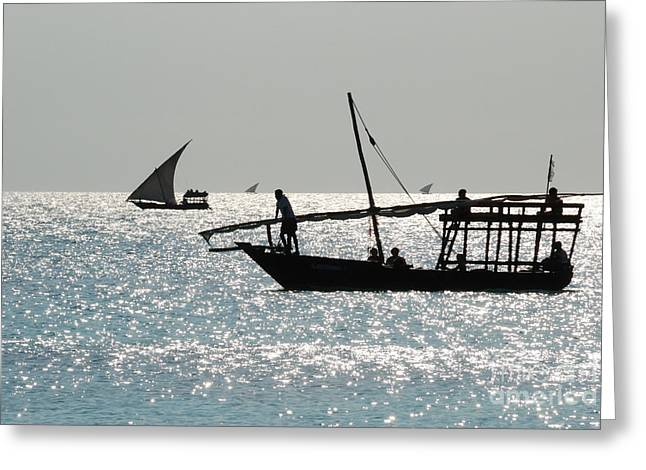 Dhows Greeting Card by Alan Clifford