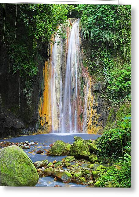 Diamond Falls- St Lucia Greeting Card by Chester Williams