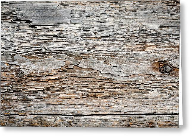 Digital Bark Texture As If Digitised Contours On Natural Wood Greeting Card