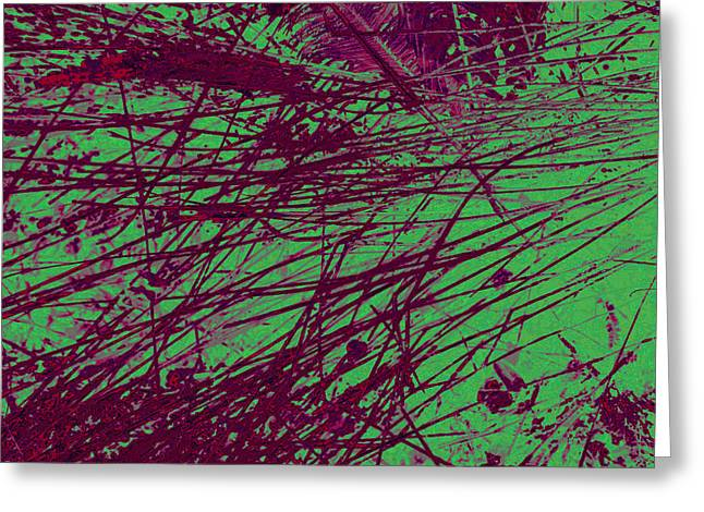 Digitized Nature Greeting Card by Colleen Cannon