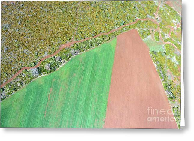 Dirt Road By Plowed Fields Greeting Card by Sami Sarkis