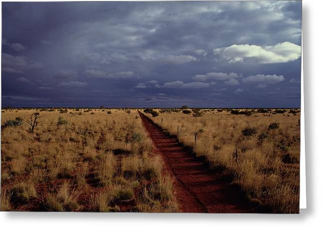 Dirt Road In A Flat Landscape Greeting Card by Medford Taylor