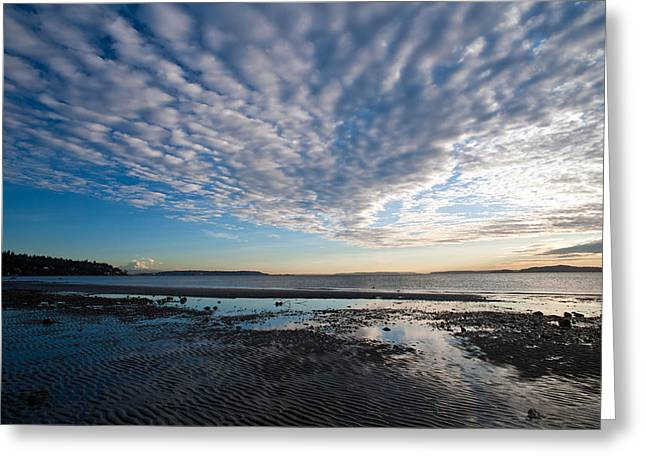 Discovery Park Beach Sunset Greeting Card
