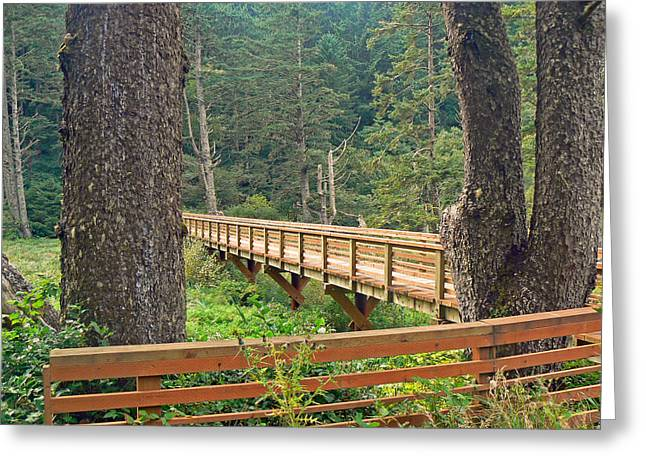 Discovery Trail Bridge Greeting Card by Pamela Patch