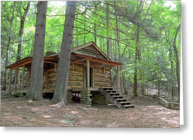 Disharoon Cabin Greeting Card by Bob Jackson