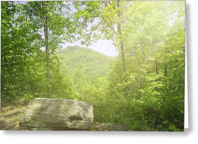 Distant View Greeting Card by Cheryl Butler