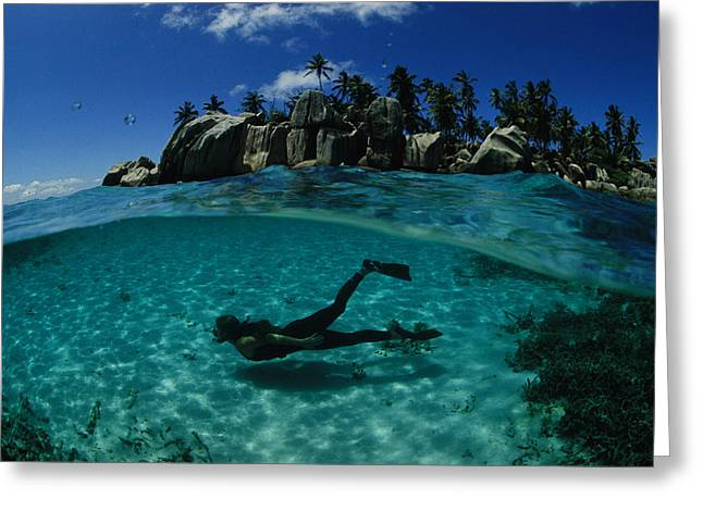 Diver Swims In The Beautiful Water Greeting Card by Bill Curtsinger