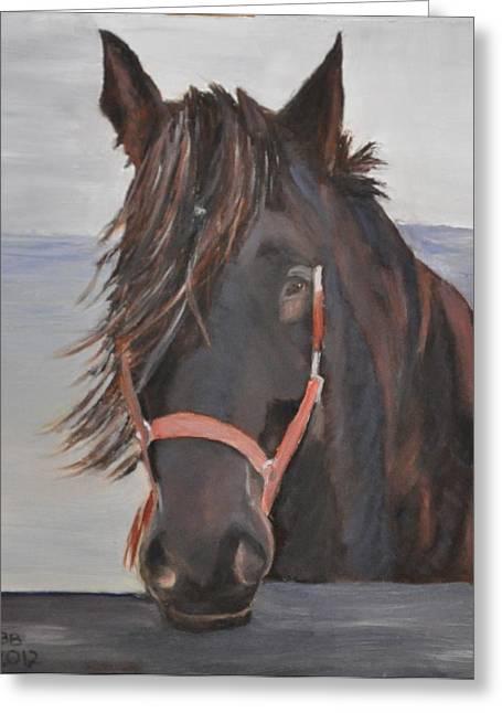 Dobbin The Horse Greeting Card by Barbara Bradbury
