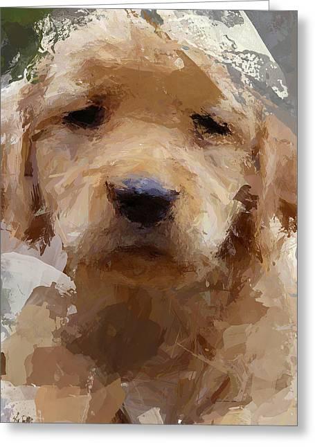 Dog 1 Greeting Card by Yury Malkov