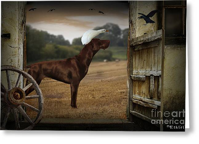 Dog And Duck Greeting Card