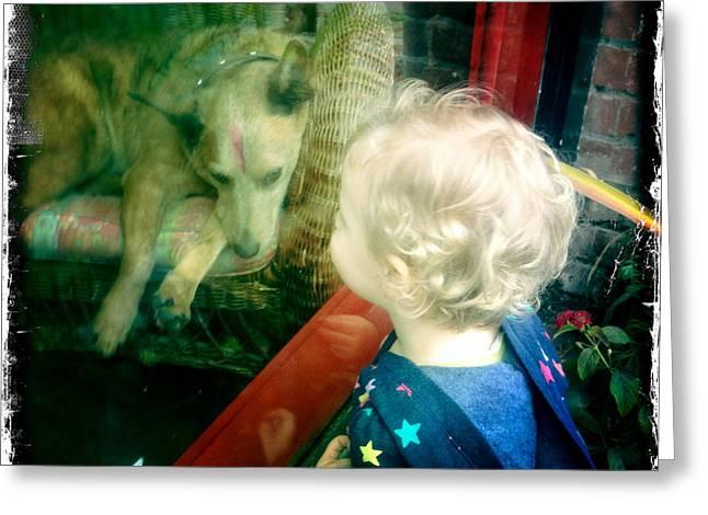 Dog In Window Greeting Card
