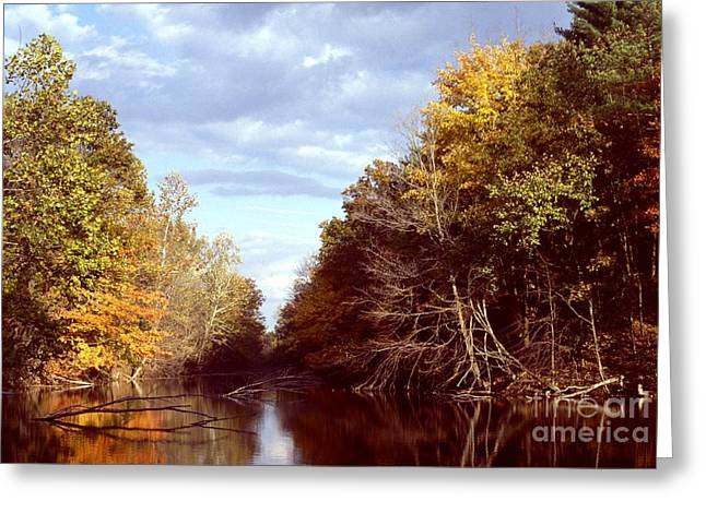 Greeting Card featuring the photograph Dogleg Lake by Jack R Brock