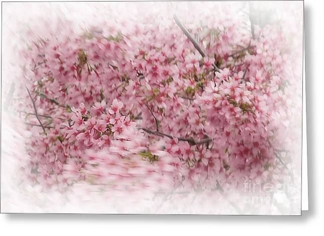 Dogwood In Motion Greeting Card