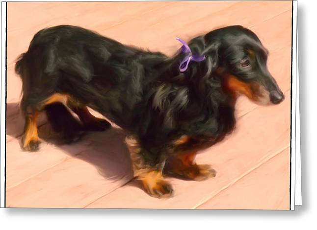 Dolled Up Dachshund Greeting Card by Susan  Lipschutz