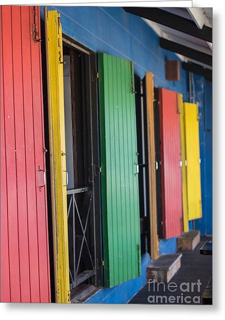 Doors Of Colors Greeting Card