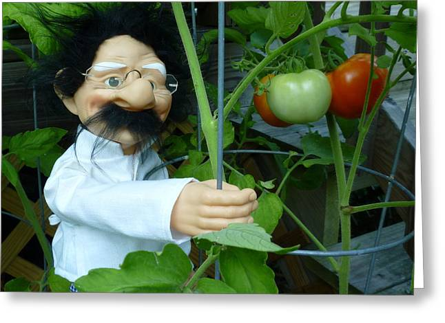 Greeting Card featuring the photograph Dorf Chef Doll With Tomatoes by Renee Trenholm
