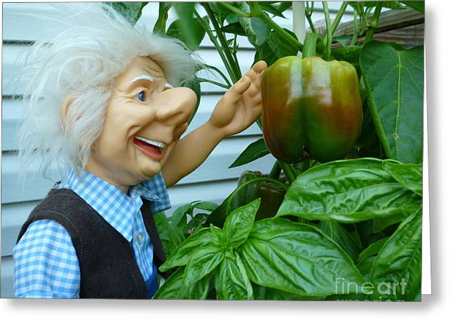 Greeting Card featuring the photograph Dorf Grandpa Doll Picking Bell Peppers by Renee Trenholm