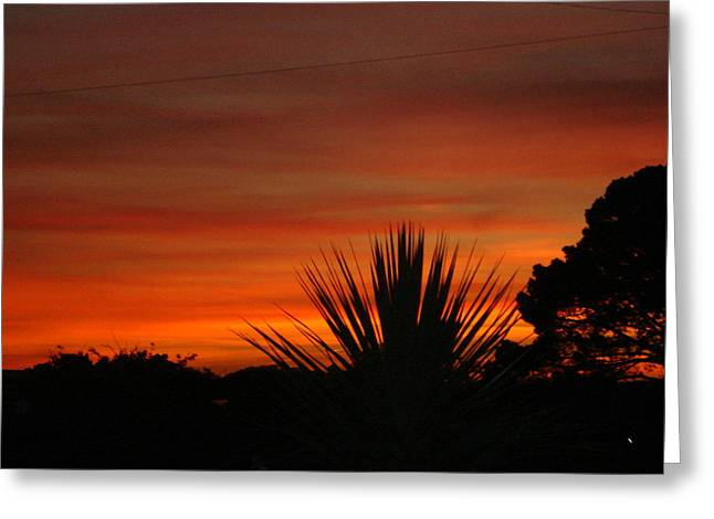 Greeting Card featuring the photograph Dorset Sunset by Katy Mei
