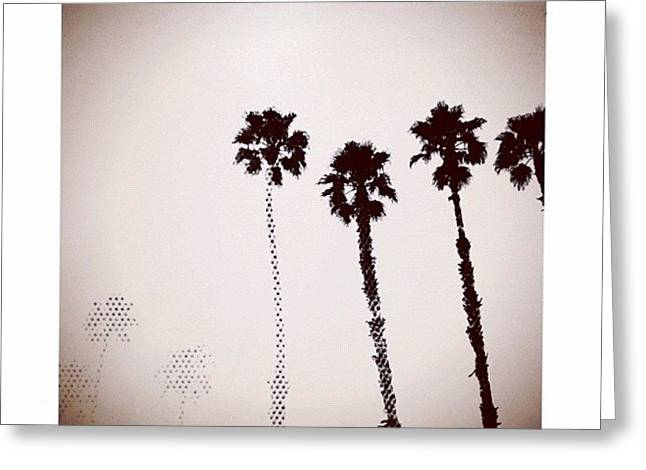 Dotty Palms Today In #calistoga Greeting Card