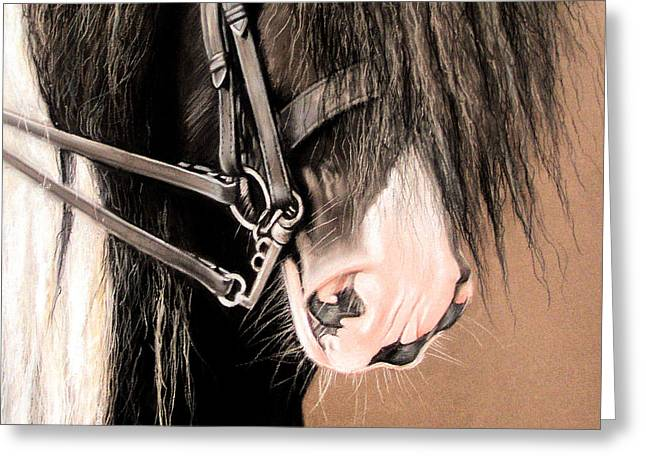 Double Bridle Greeting Card by Caroline Collinson