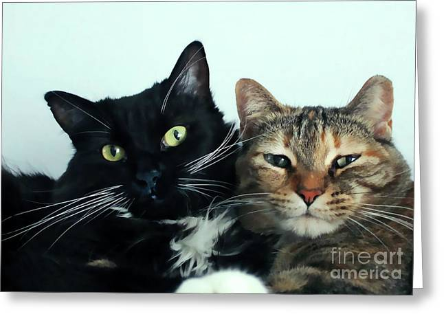 Double Trouble 1 Greeting Card