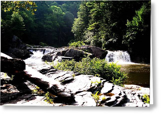 Double Waterfalls Greeting Card by Carrie Munoz