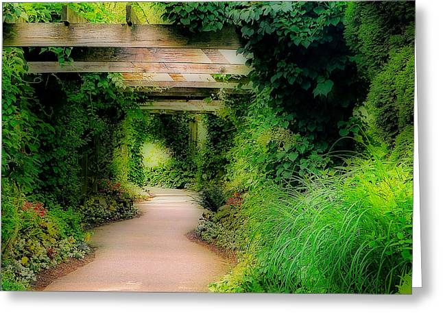 Down The Garden Path Greeting Card by Blair Wainman