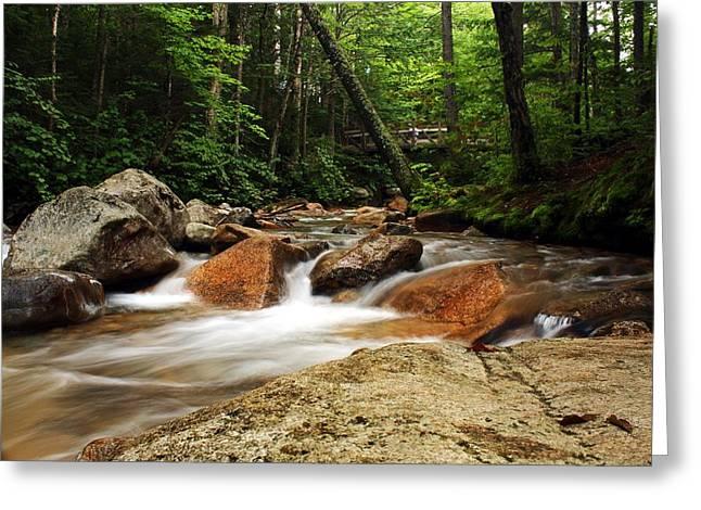 Downstream At The Basin Greeting Card by David Gilman